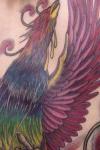 Phoenix on Back