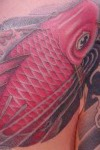 A carp on chest