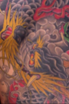 Japanese traditional rising big dragon on back